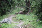 Der Innradweg 2