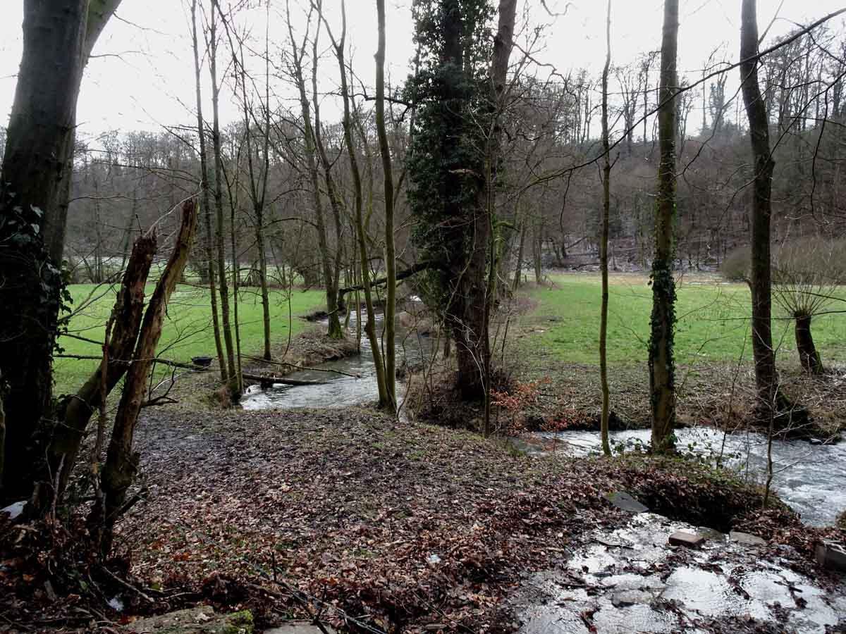 Rundwanderweg Neandertal 4