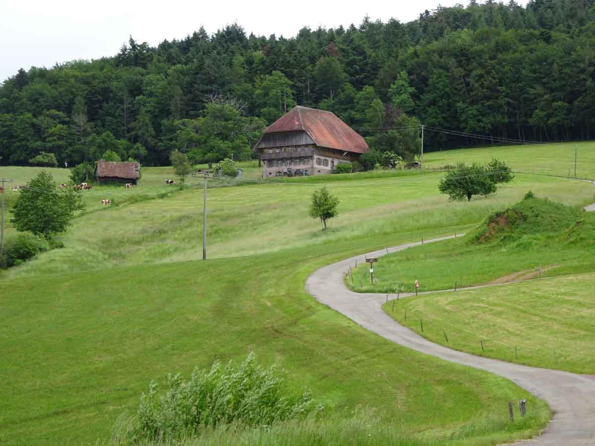 Radtour Kinzigtal
