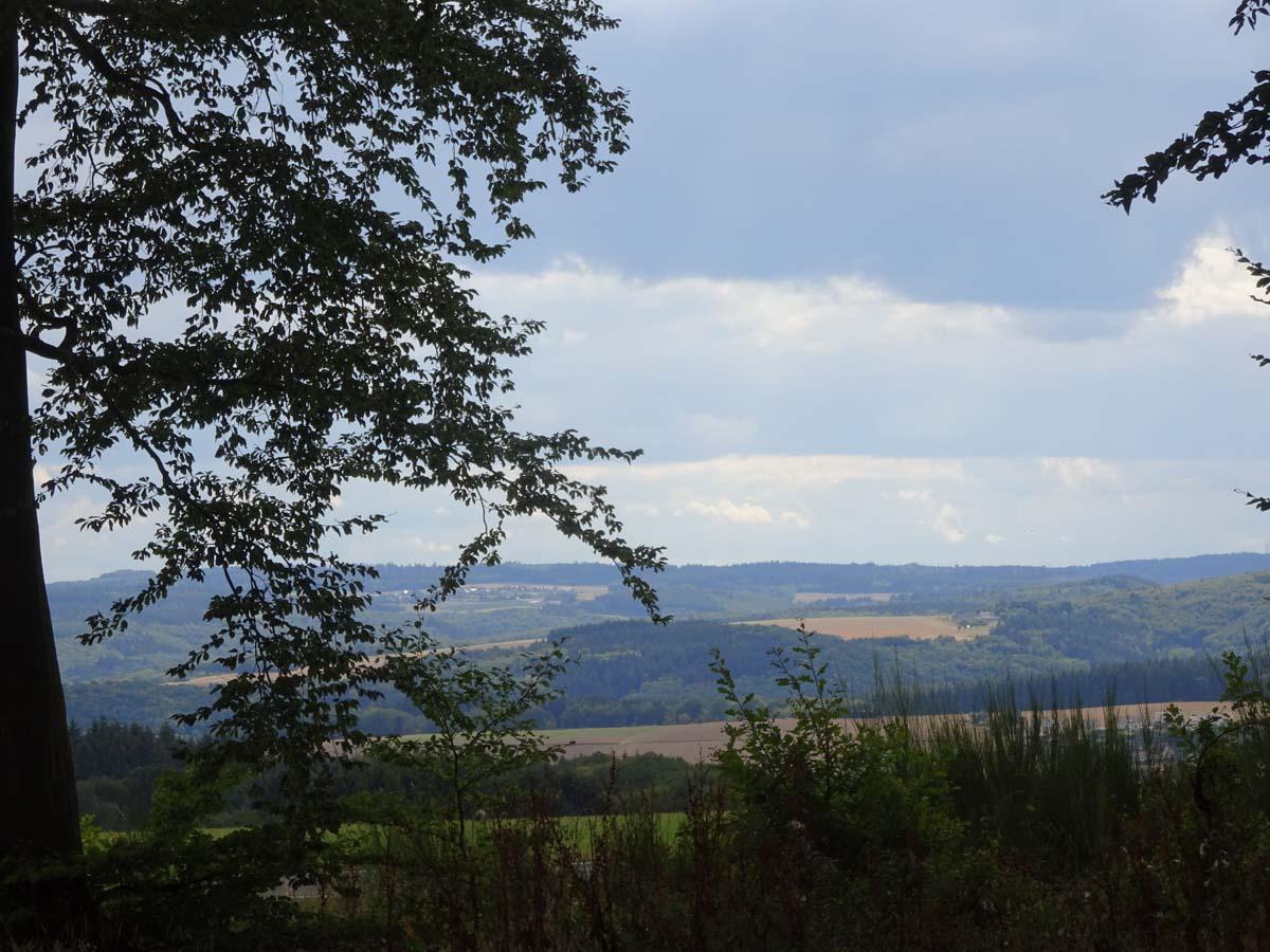Ausblick Traumpfädchen Eifeltraum