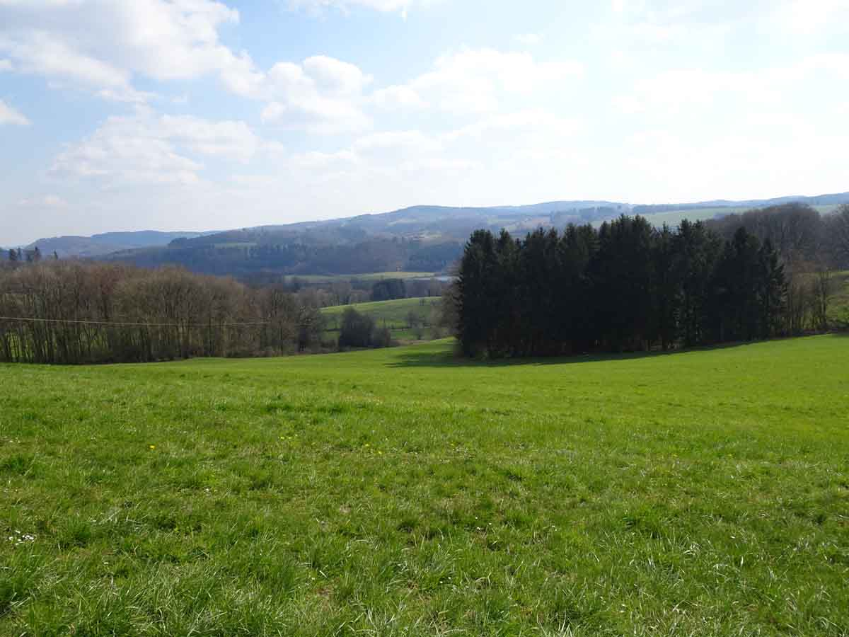 Liederweg Lindlar 3