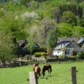 Urlaub in Deutschland: Geheimtipp Bergisches Land 7