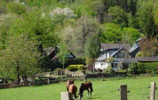 Urlaub in Deutschland: Geheimtipp Bergisches Land 5