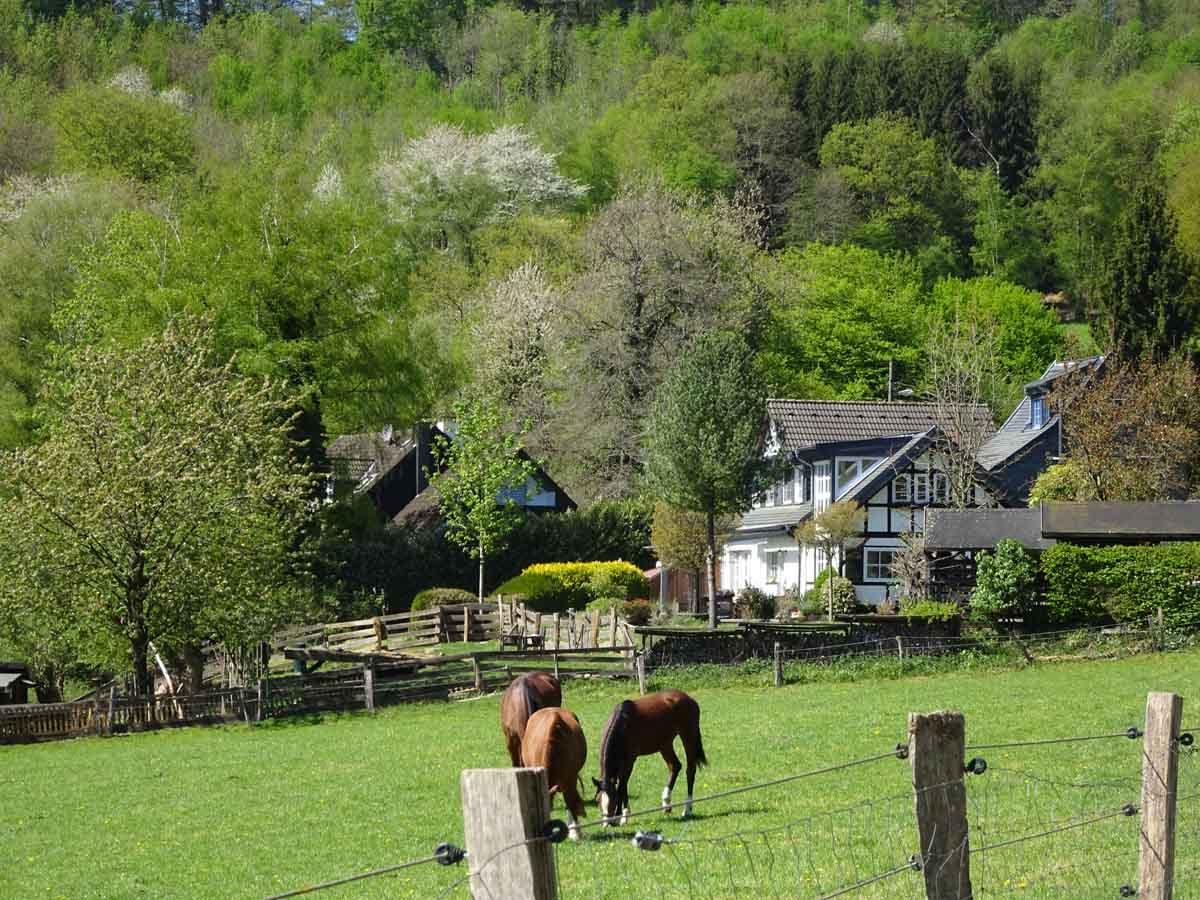 Urlaub in Deutschland: Geheimtipp Bergisches Land 1