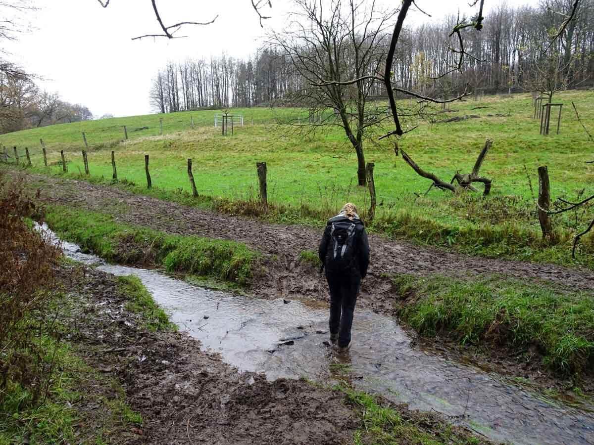 Wanderung auf kleinen Pfaden durch den Scharpenacken 4