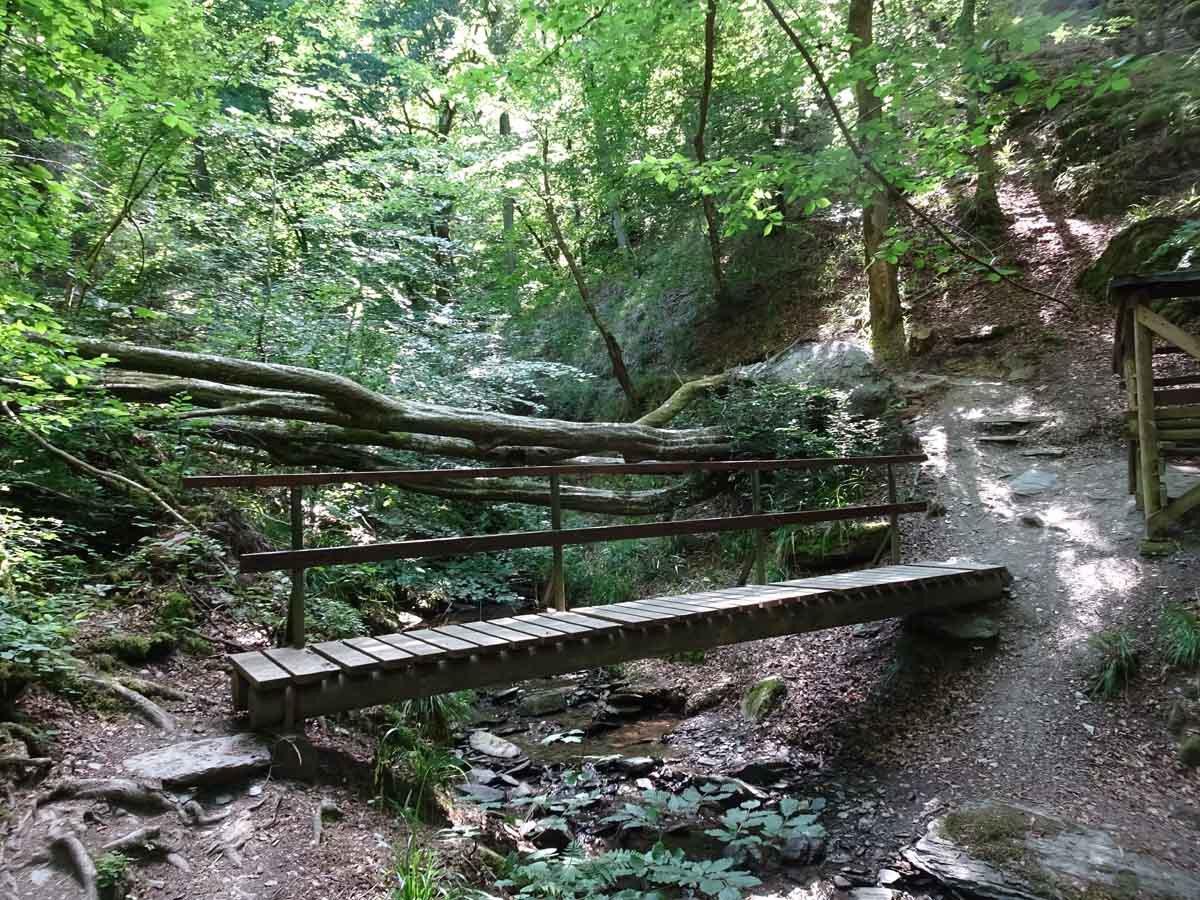 Wanderung durch die wildromantische Baybachklamm 5
