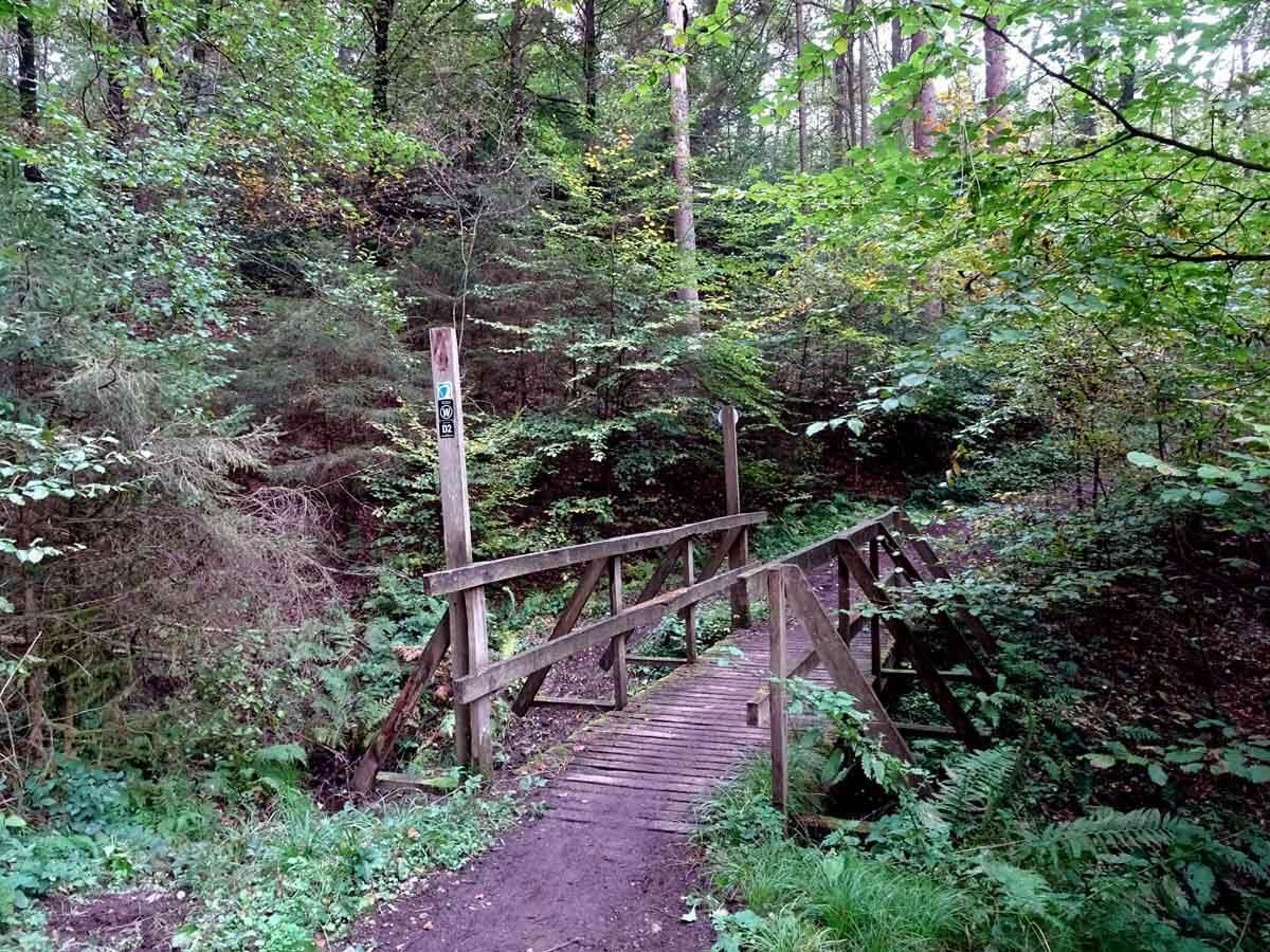Brücke im Siefental