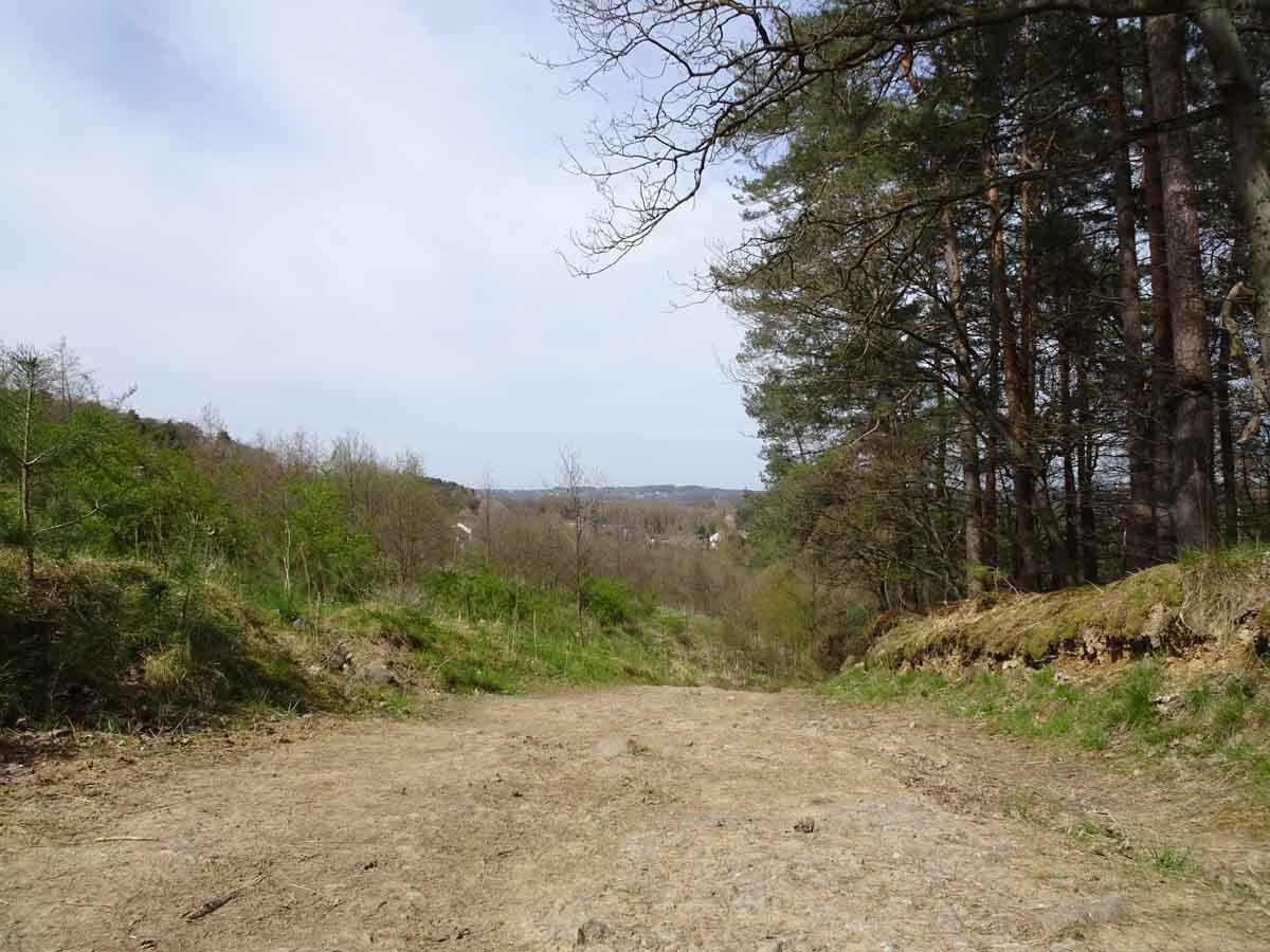 Breiter Weg auf dem Bergbauweg