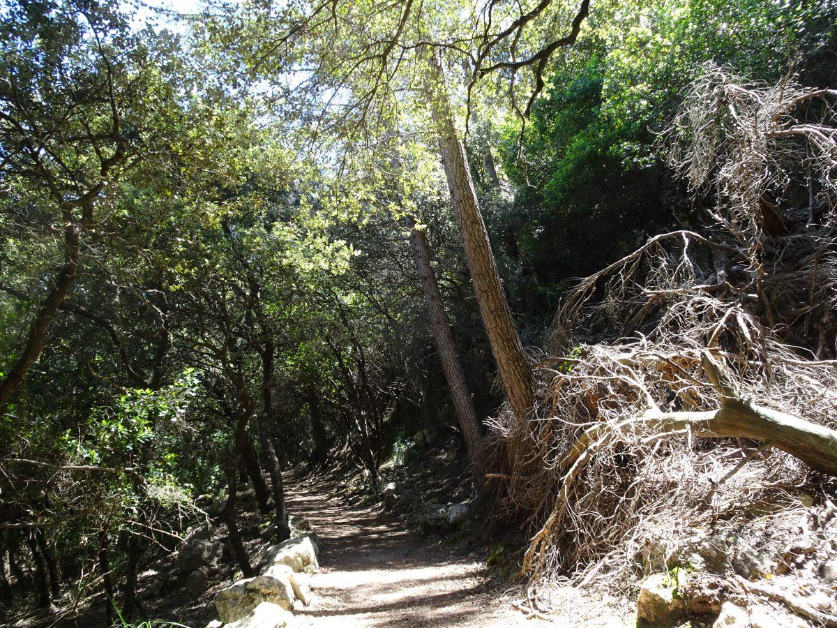 Wandern auf dem Trockenmauerweg