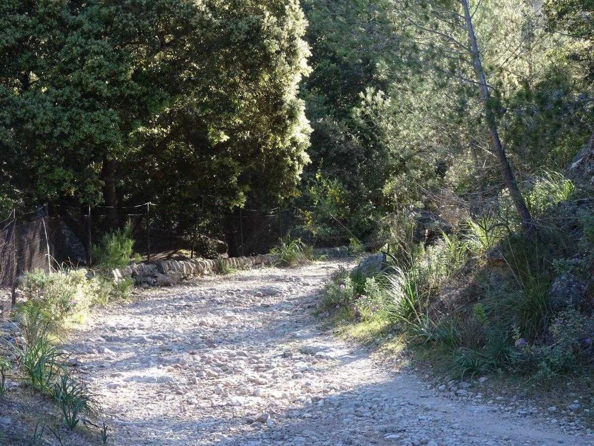 Wandern auf dem Trockenmauerweg Valldemossa