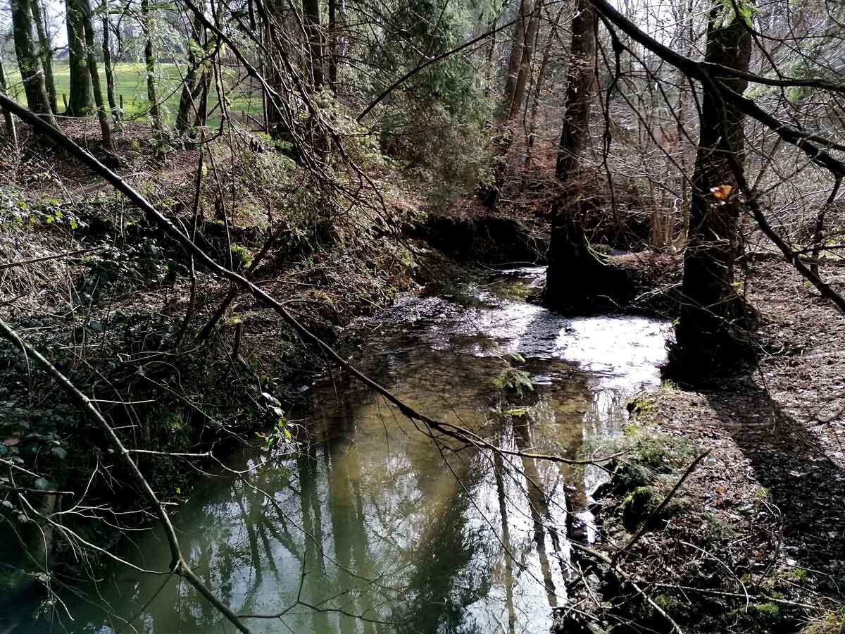 Rundweg Wenigerbach und Naafbachtal 3