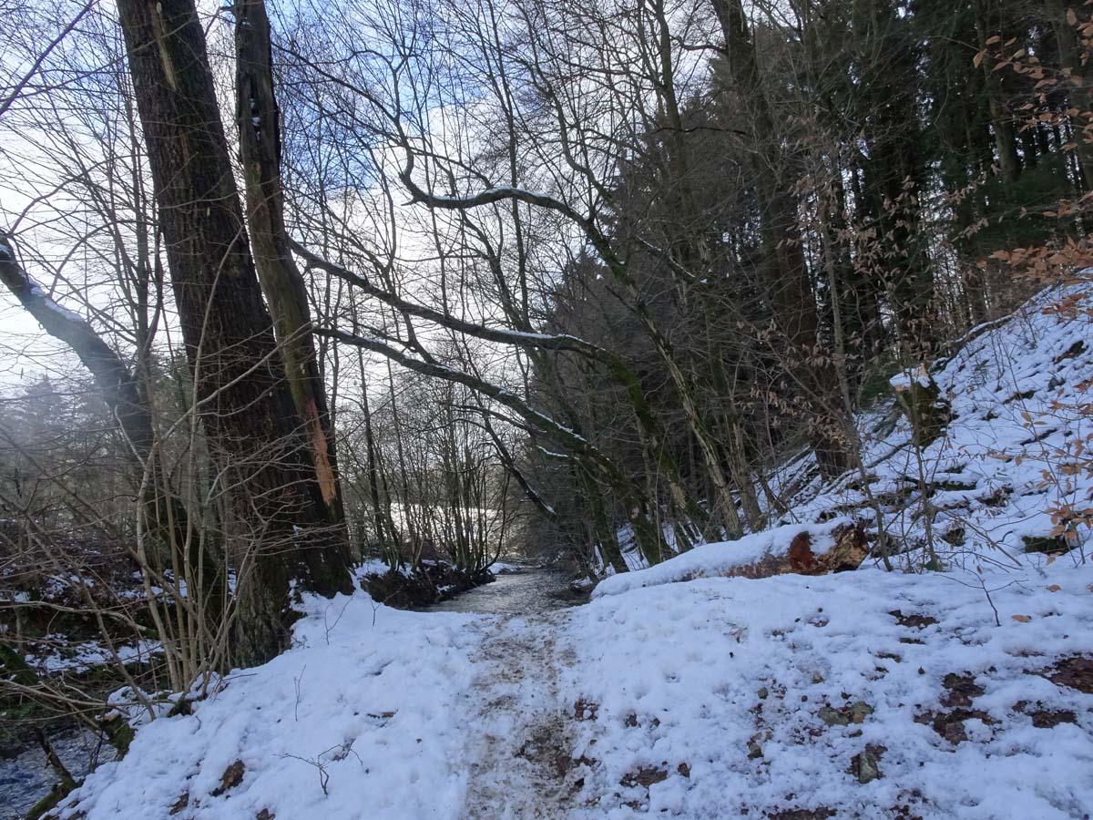 Eifgenbachweg Pfad