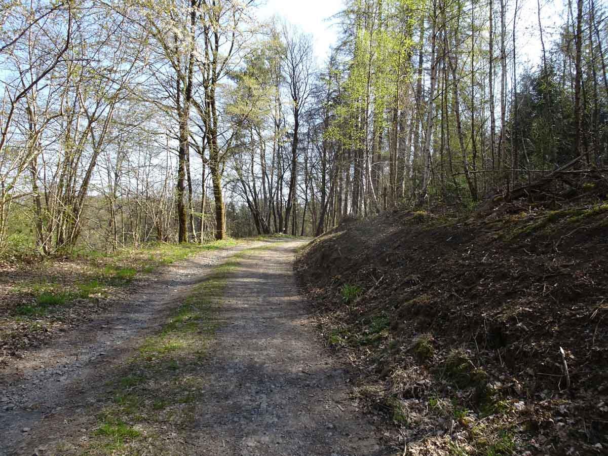 Böllweg Wanderweg