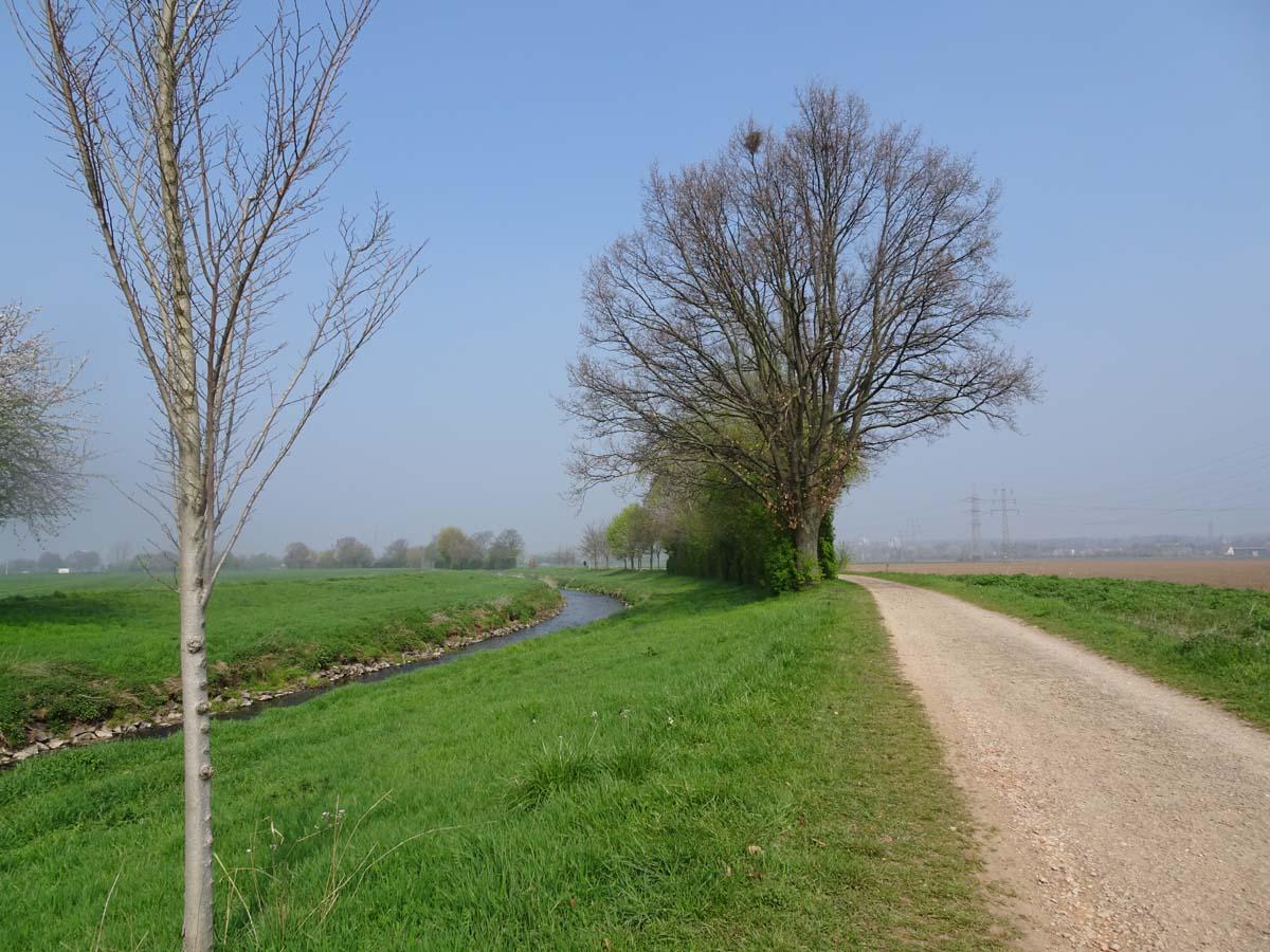 Radtour im Südwesten von Köln Erftradweg