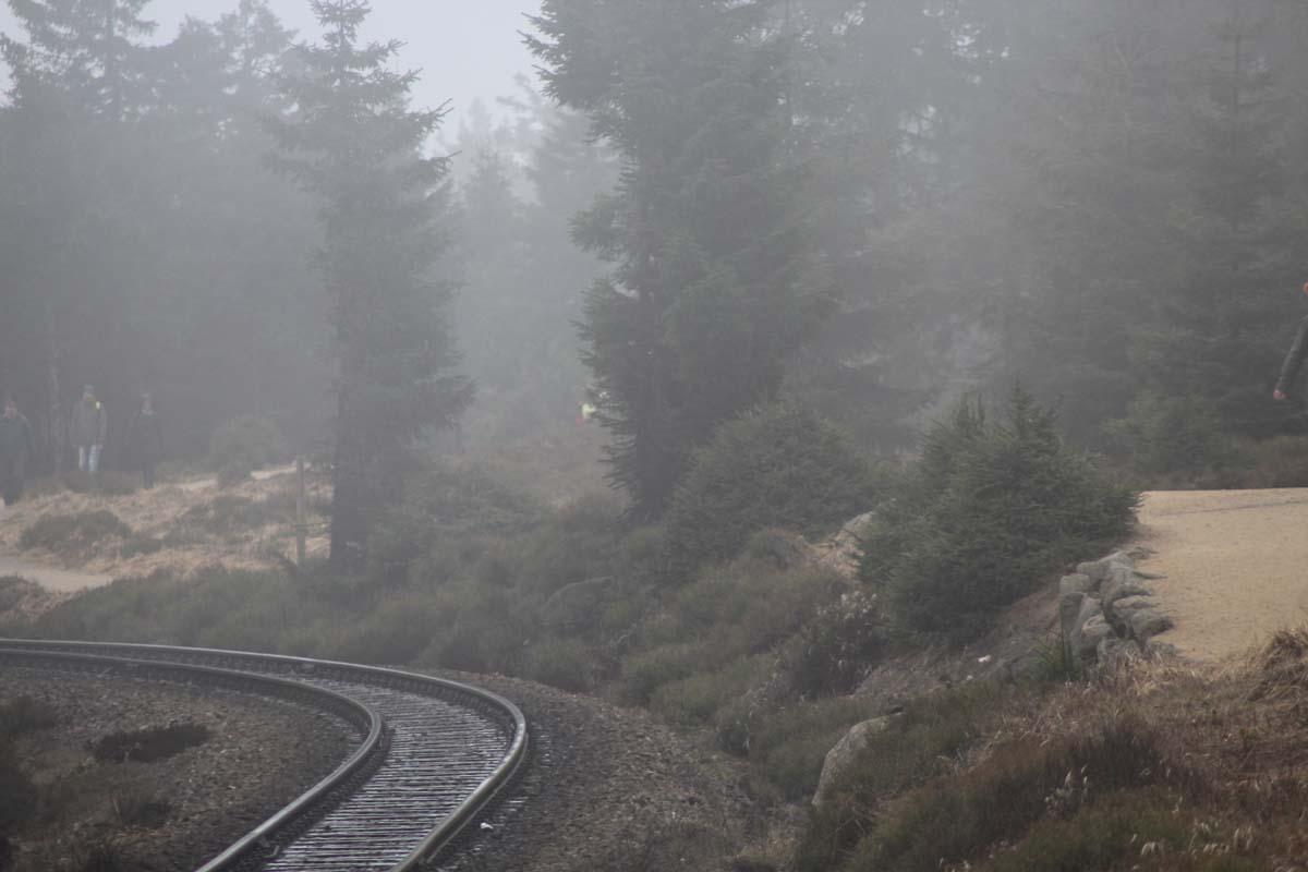Warum ich den Harzer Hexenstieg nicht weiterempfehlen würde 2