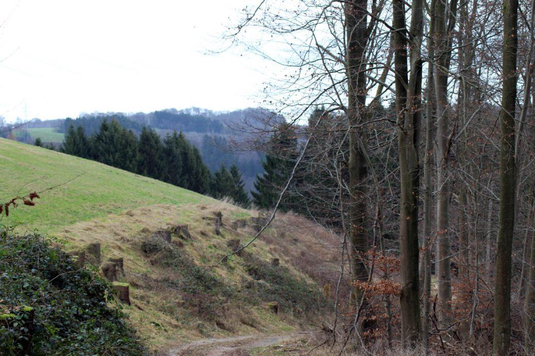 Aussicht Bergisches Land