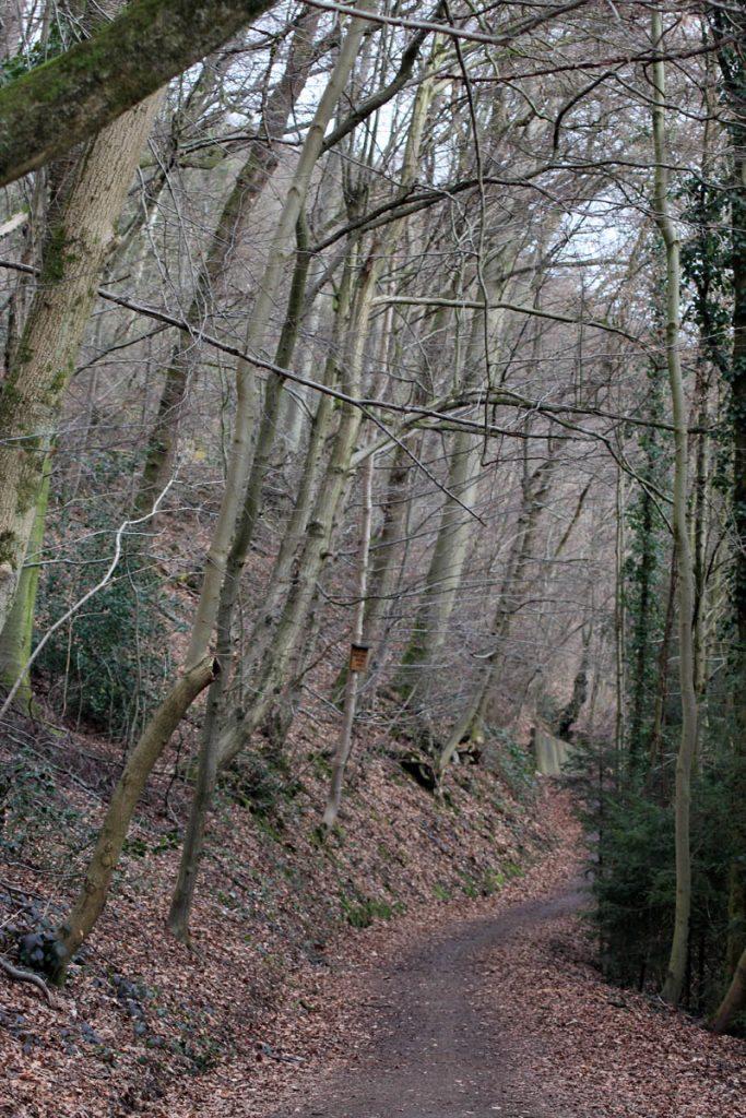 Wanderweg Hexentour
