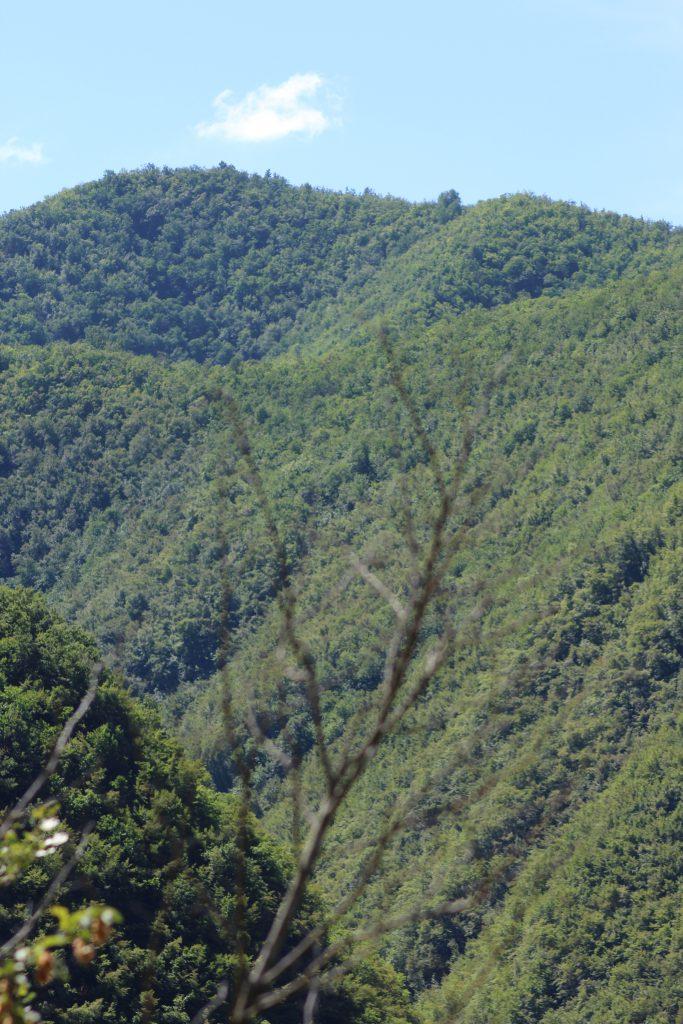Landschaft Region Genua