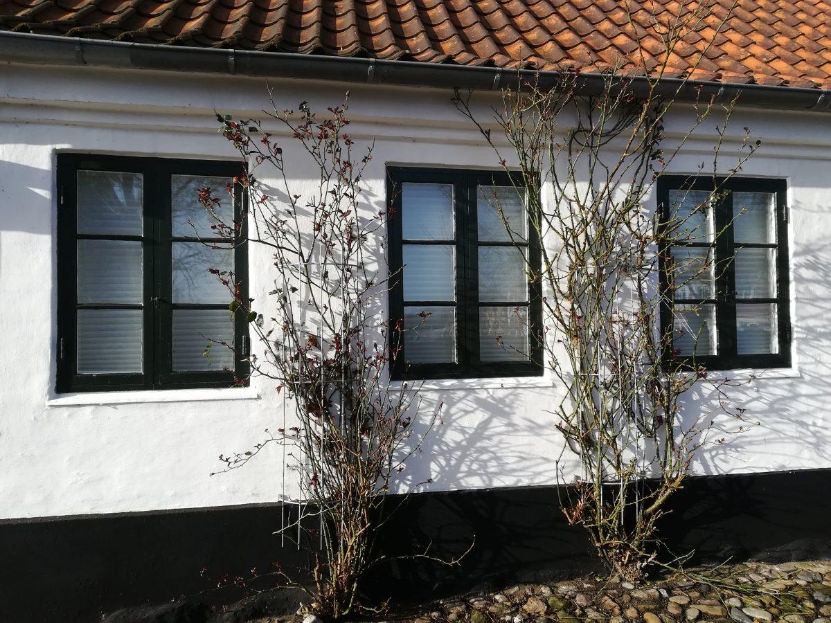 Ribe entdecken - Ein Tag in Dänemarks ältester Stadt 1
