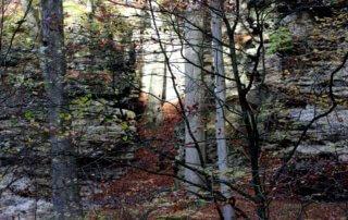 5 Tage auf dem Mullerthal Trail 11