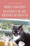 Katzen und Reisen: Tipps für die richtige Unterbringung