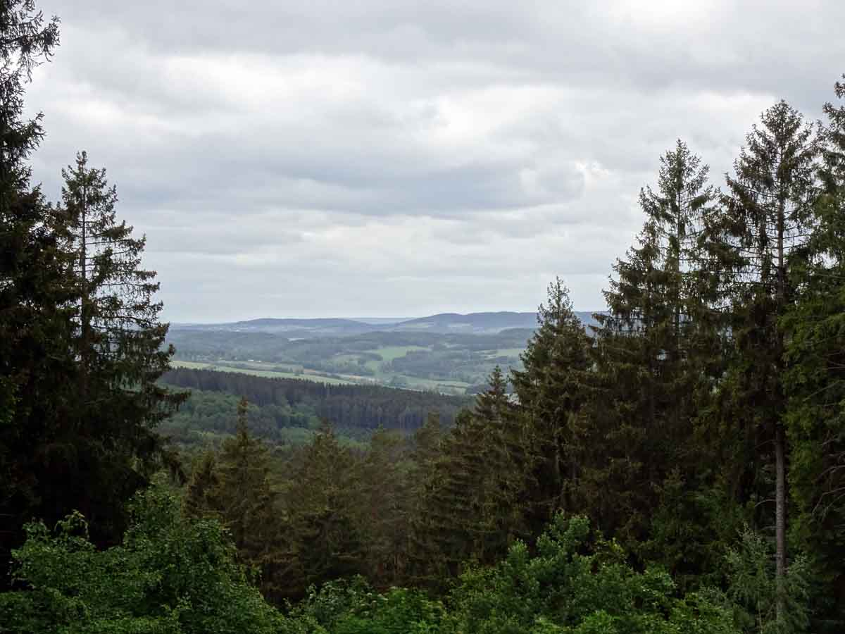 Der Keltenpfad bei Gerolstein 3