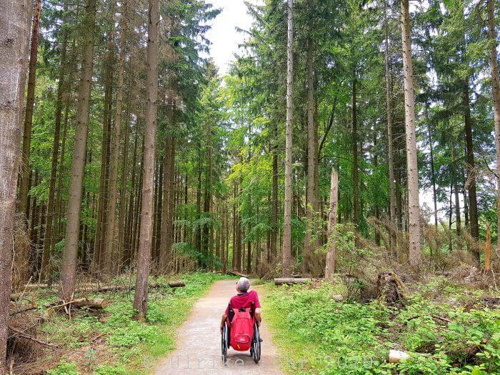 Round up Eifel: 7 Blogger verraten ihre Lieblingswanderwege 6