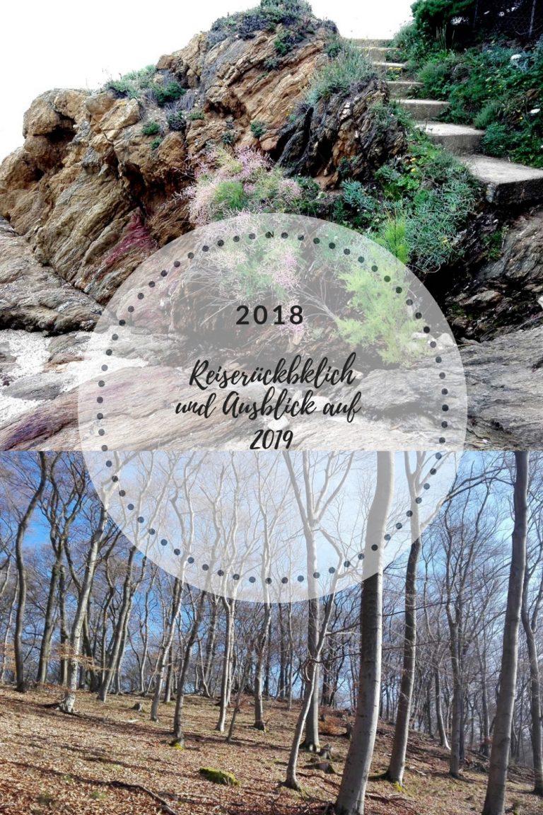 Rückblick 2018 und Ausblick 2019