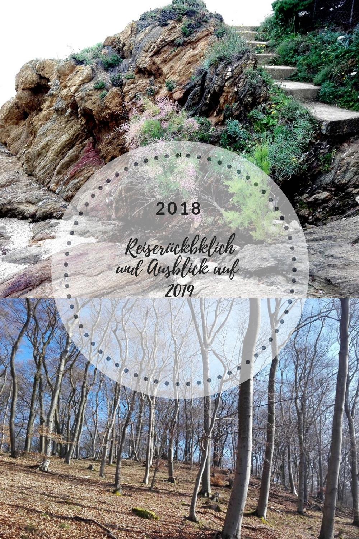 Rückblick 2018 und Ausblick 2019 6