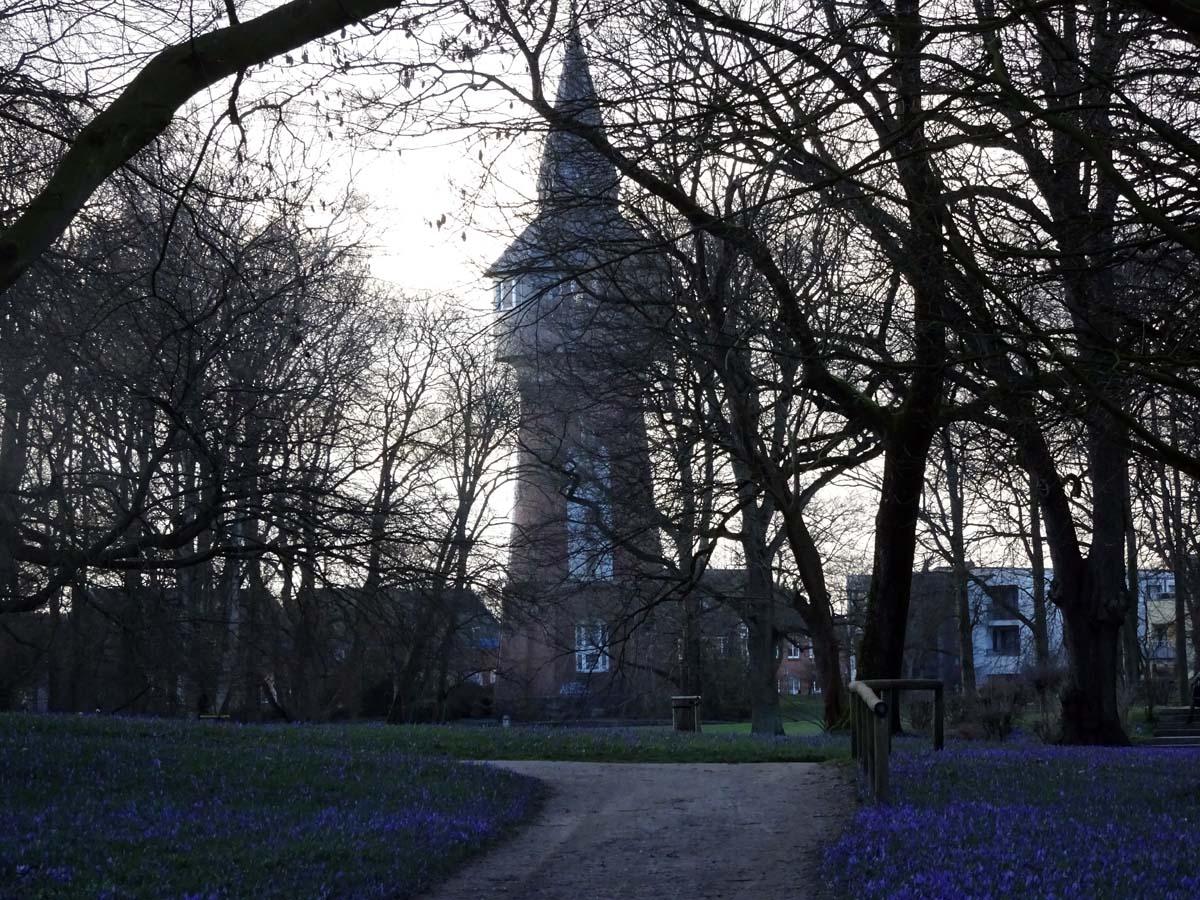 Krokusblüte Husum Turm