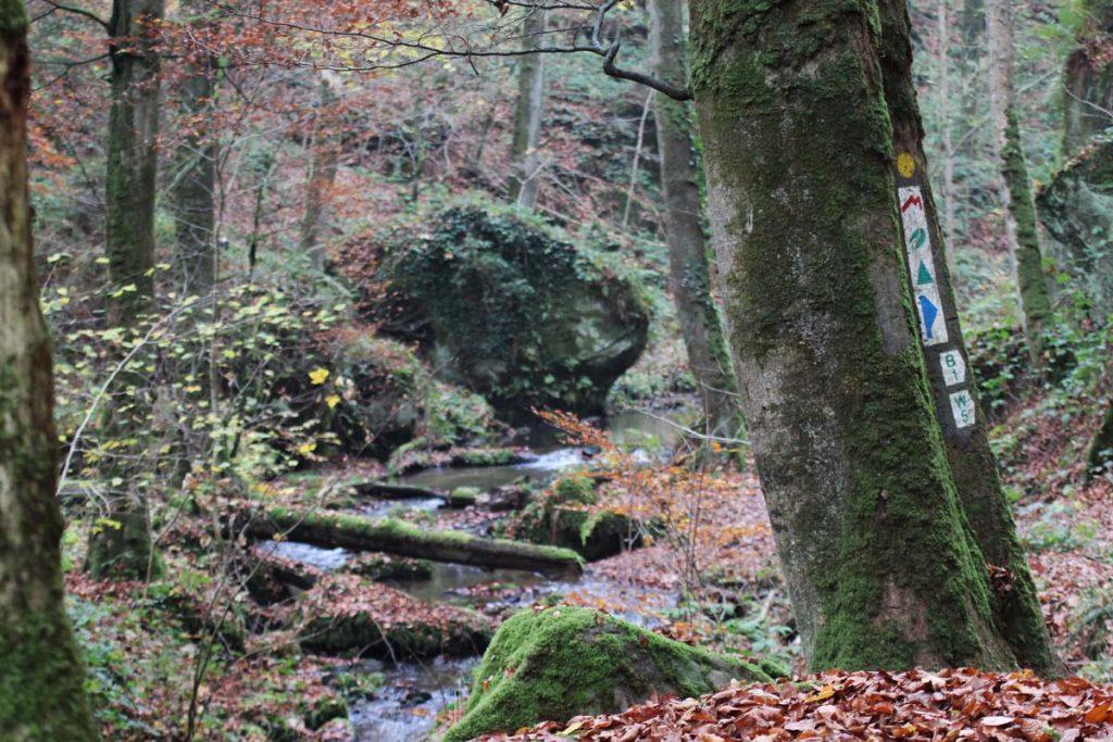 Mullerthal Trail Tal