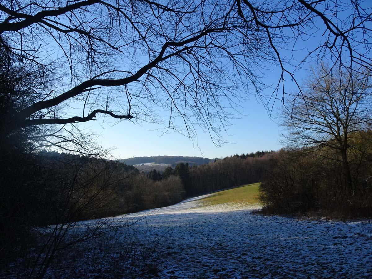 Wandern an der Dhünntalsperre - Der D 4Naturwelten Wiese