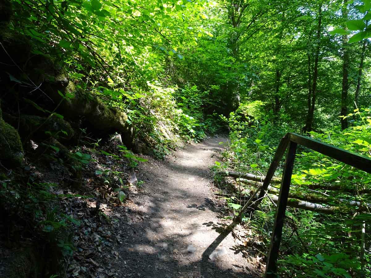 Durch das Tretschbachtal zur Löwenburg 3