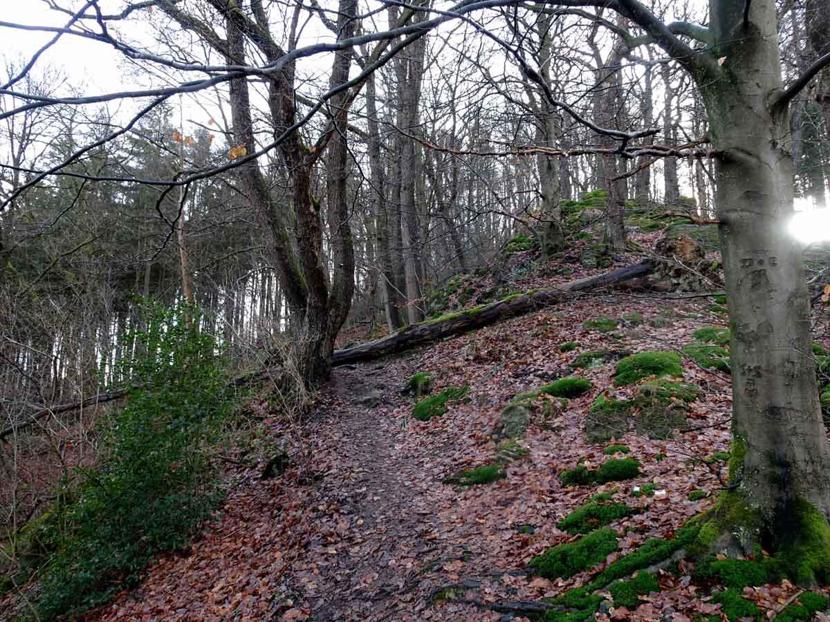 Rundwanderweg Eschbachtal