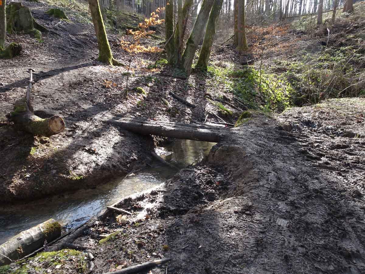 Rundwanderweg Wahnbachtalsperre 4