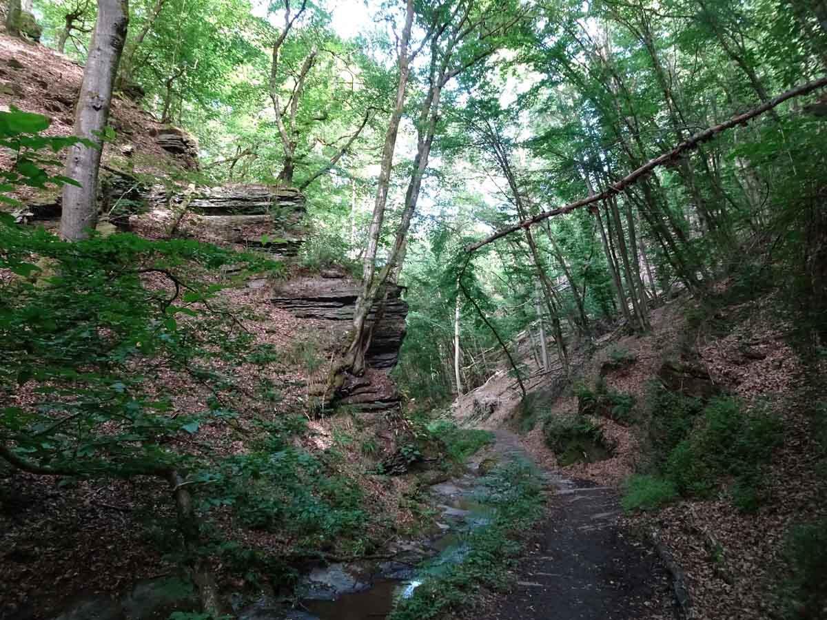 Wanderung durch die wildromantische Baybachklamm 3