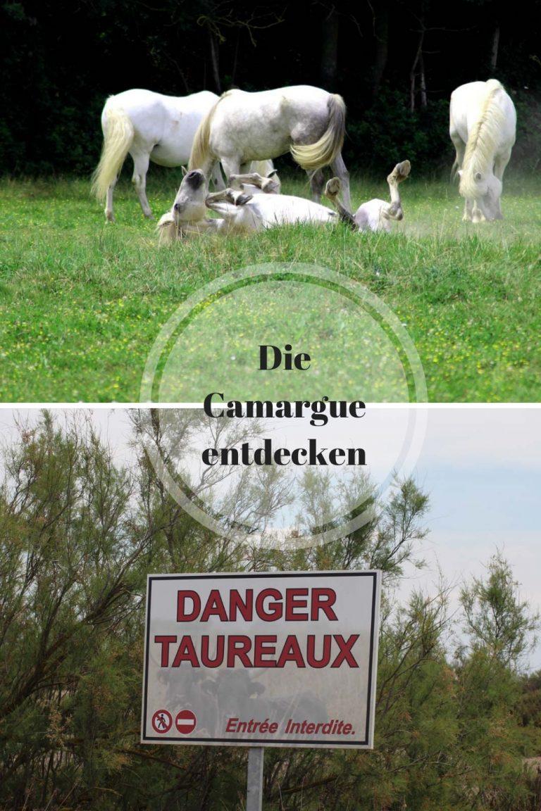 Die Carmargue – Vorstellung und Wirklichkeit