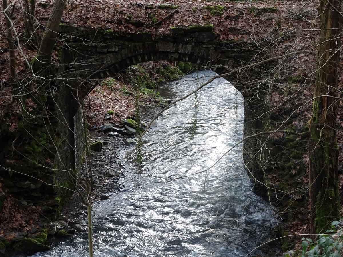 Rundwanderweg Eschbachtal 5