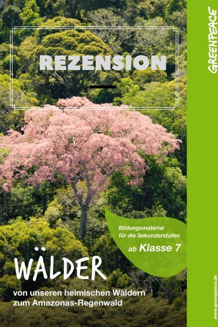 Unterrichtsmaterial: Wälder – Von unseren heimischen Wäldern zum Amazonas-Regenwald – Eine Rezension
