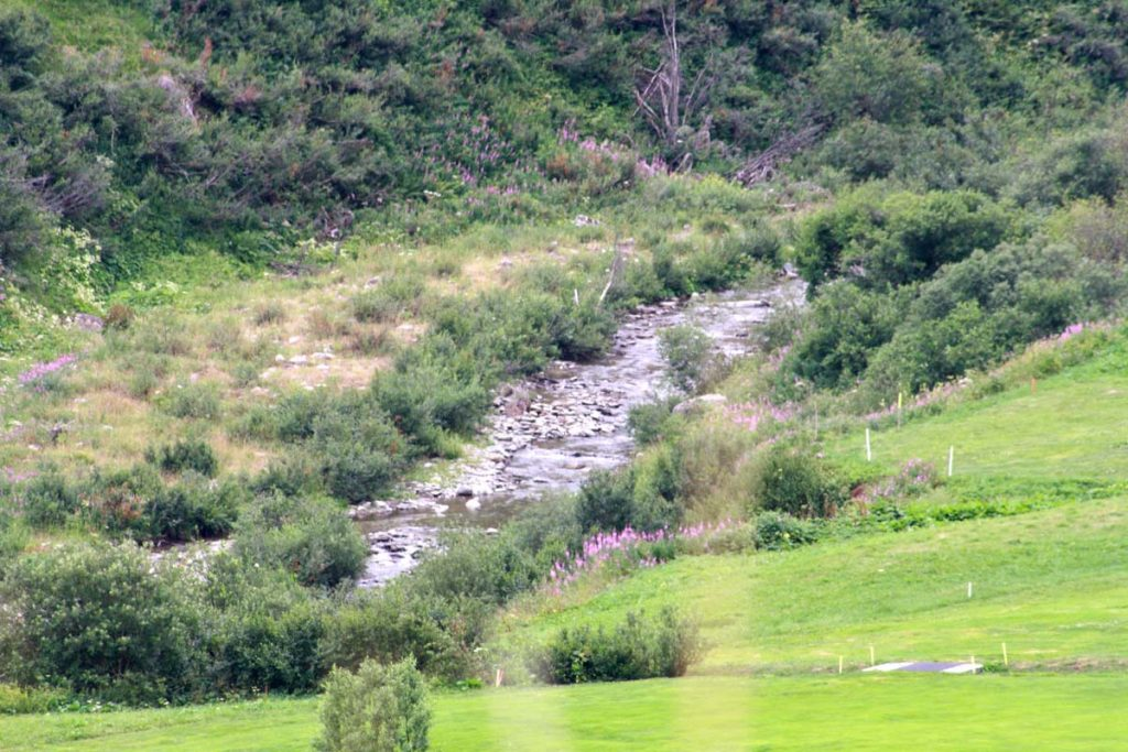 Rheinradweg Rhein hinter Quelle