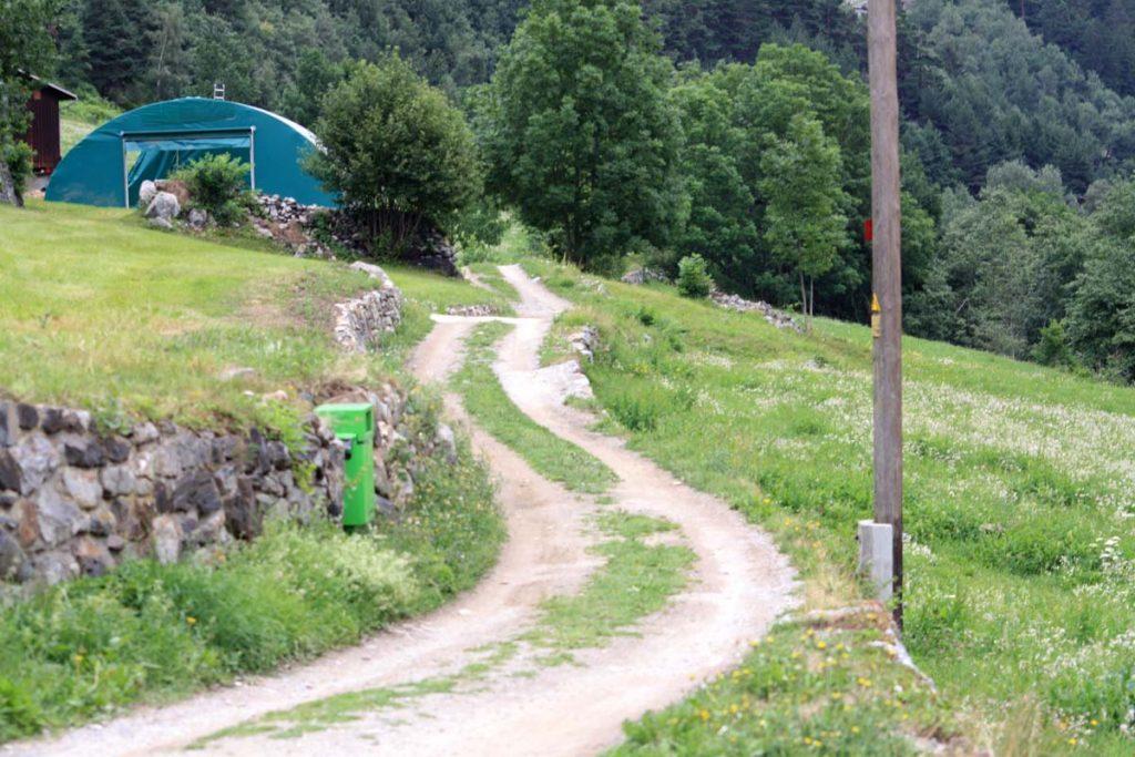 Rheinradweg Weg