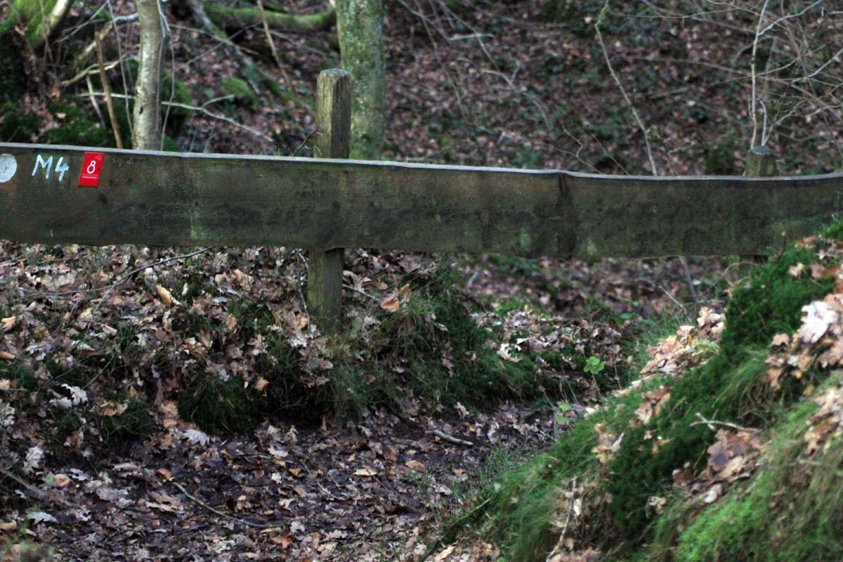 Schöne Kurzwanderungen Zaun