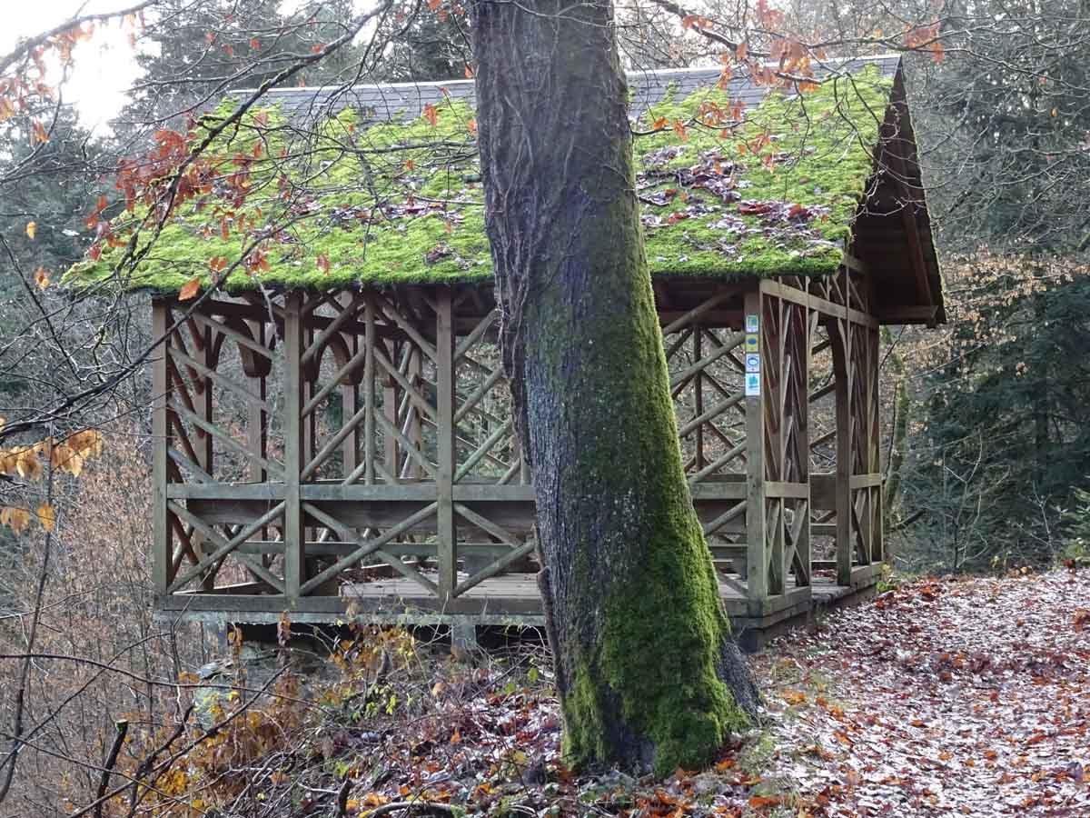 Schutzhütte am Grafschaft Pfad