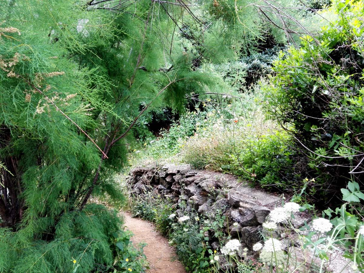 Sentier Littoral 5