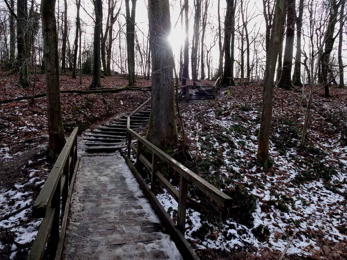 Rundwanderweg Neandertal 6