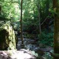Wandertipp Ehrbachklamm 16