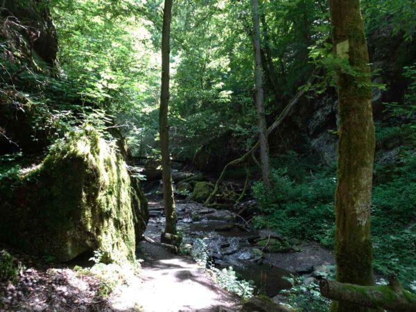 Wandertipp Ehrbachklamm 3
