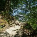 Wanderung durch die wildromantische Baybachklamm 9