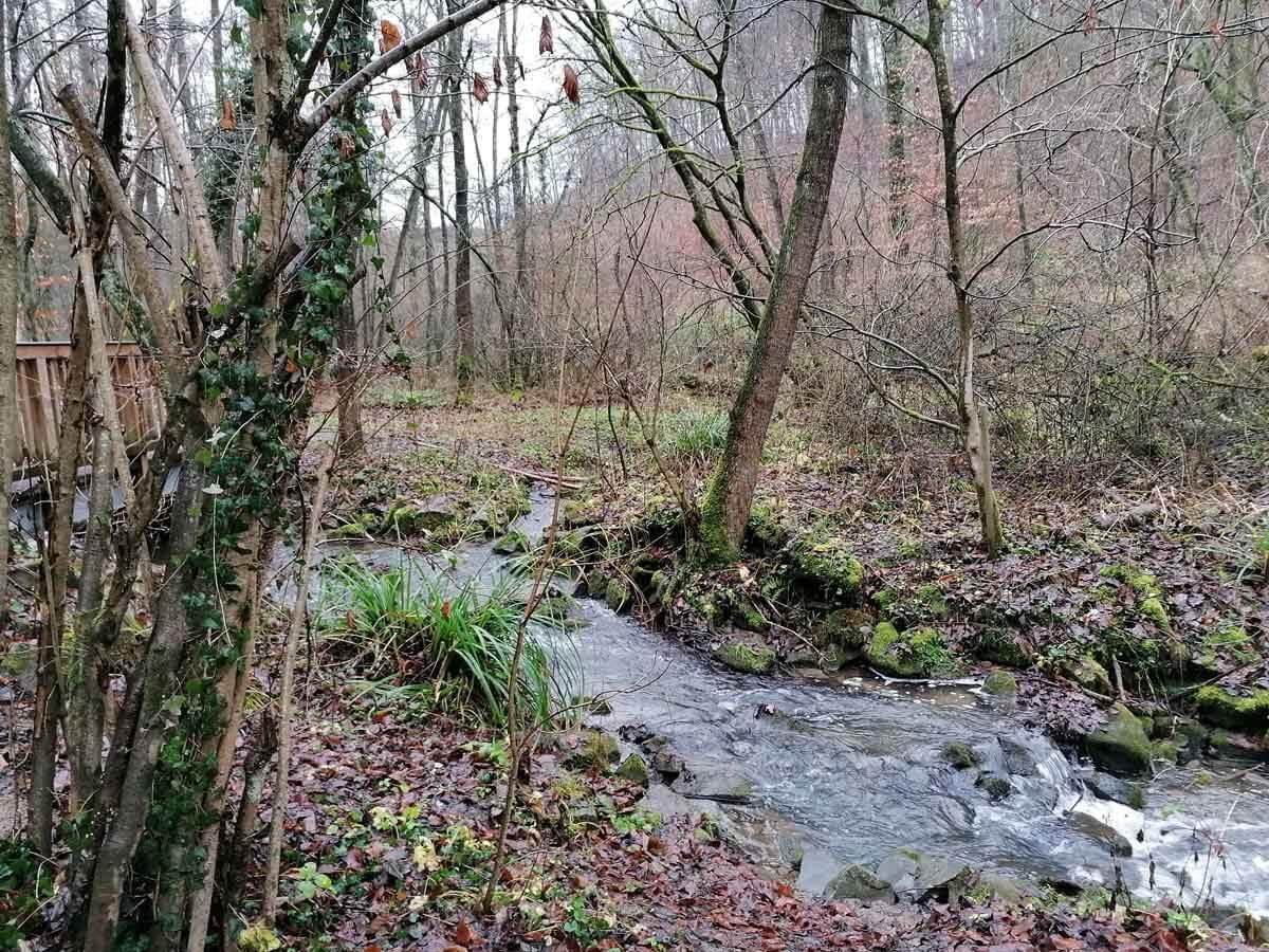 Rundwanderweg Papiermühle Alte Dombach 1