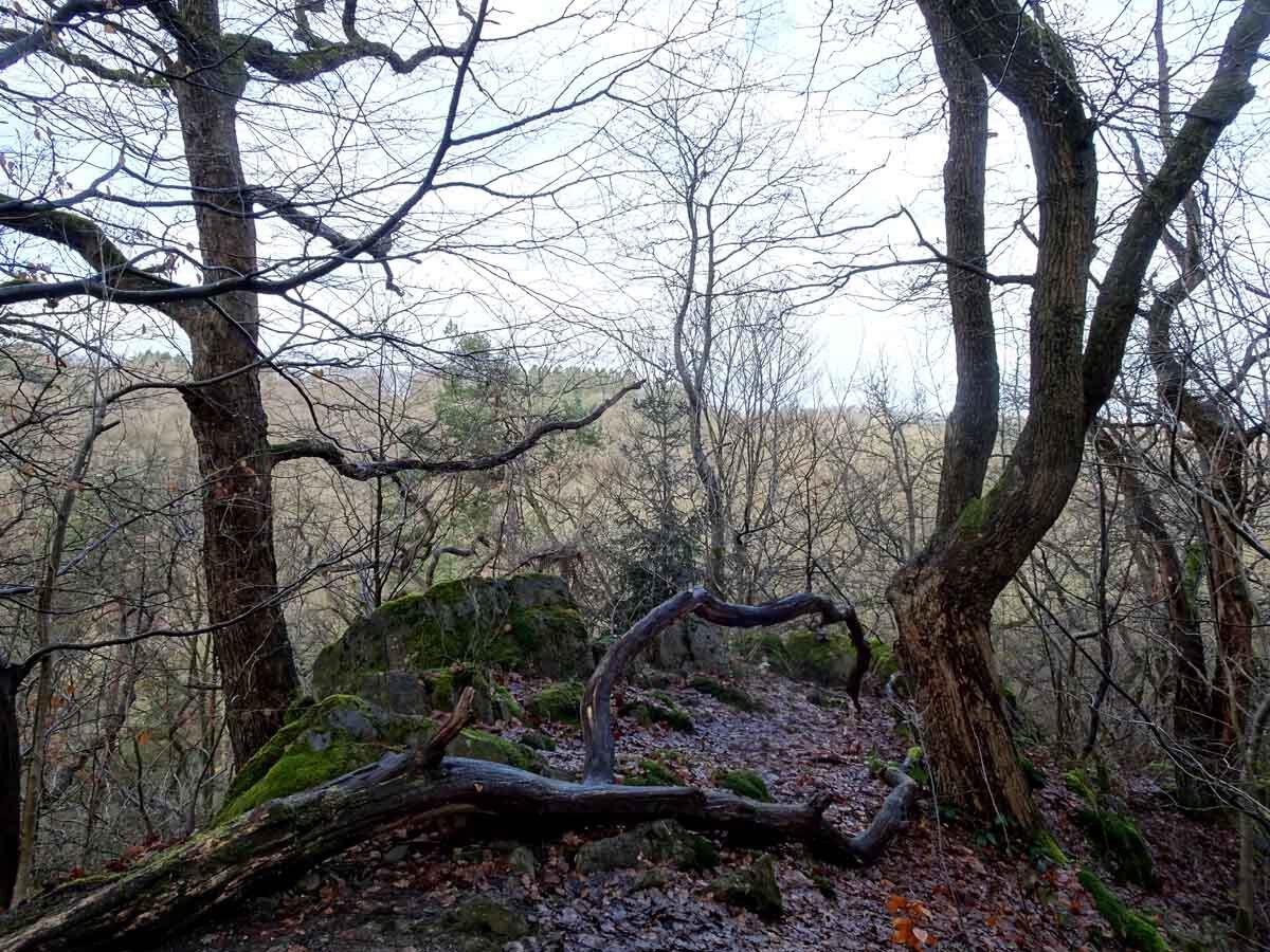 Rundwanderweg Eschbachtal 1